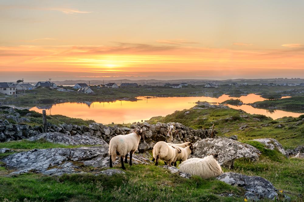 Partir en séjour linguistique à Toussaint en Irlande